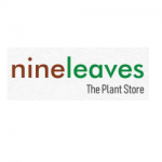 nineleaves - The Plant Store in Pune